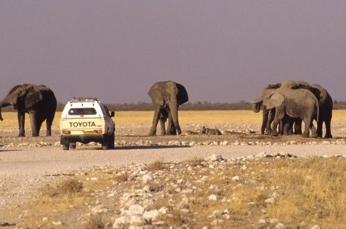 Namibia Fly and Drive