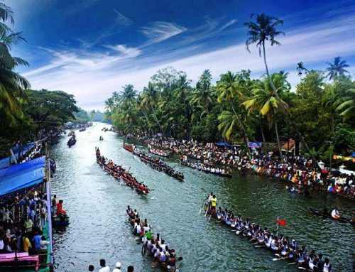 India Kerala - La colorata Nehru Trophy Snake Boat Race
