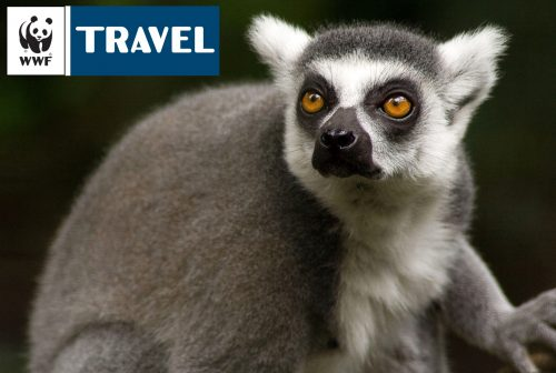 Madagascar - Speciale WWF Travel